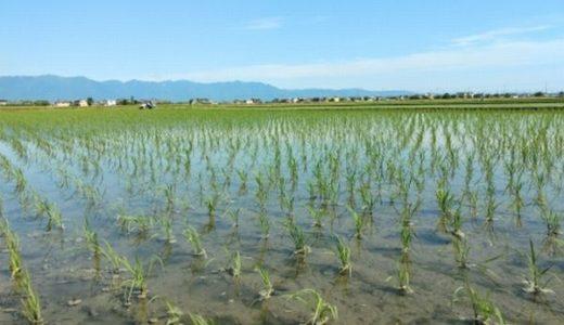 農地改革による日本仏教の衰退
